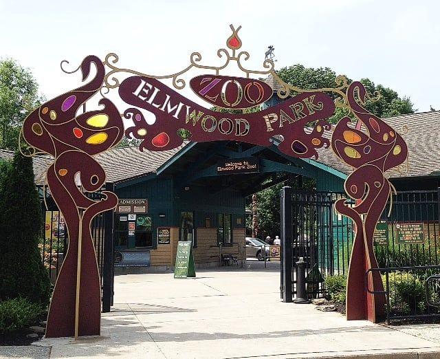 Treetop Adventures at Elmwood Park Zoo Is An Epic Adventure Park In Pennsylvania