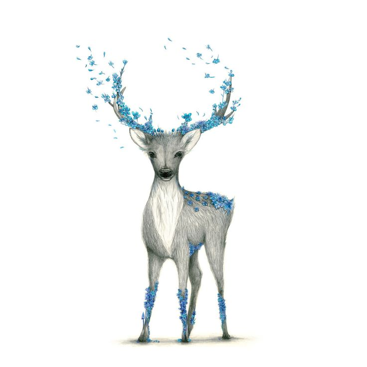Image of Deer Blue