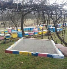 One very effective method of preventing swarming, which could be especially useful to beekeepers with a lot of colonies, is as follows.
