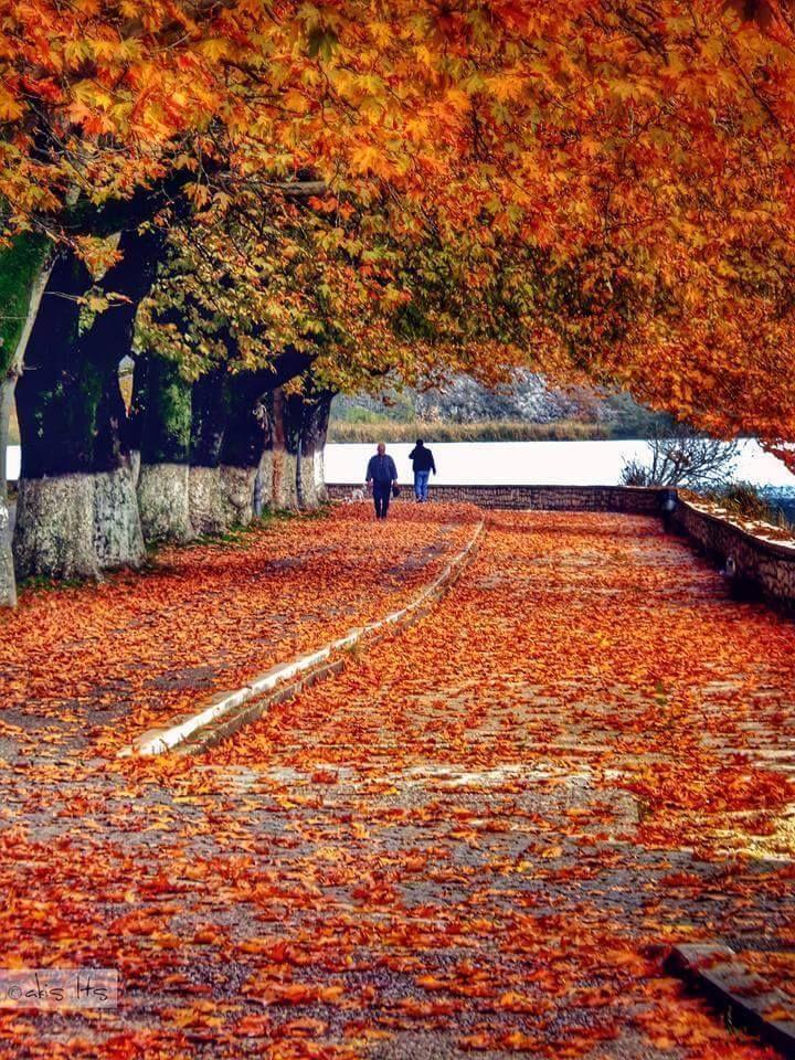 Fall in Ioannina, Greece