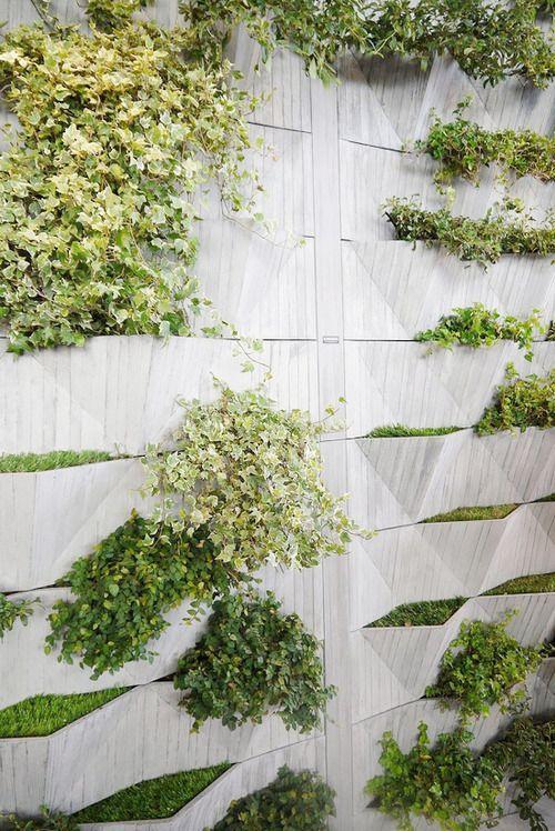 green wall + concrete + pockets