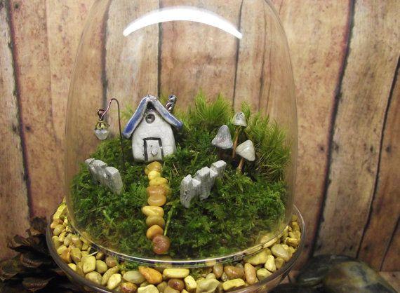 Live plant terrarium - https://www.etsy.com/listing/110671517/hey-cupcake-live-moss-terrarium-with