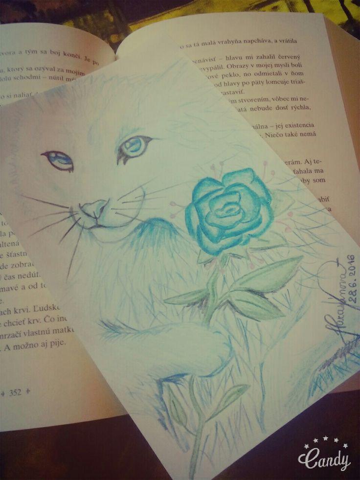 #cat #rose