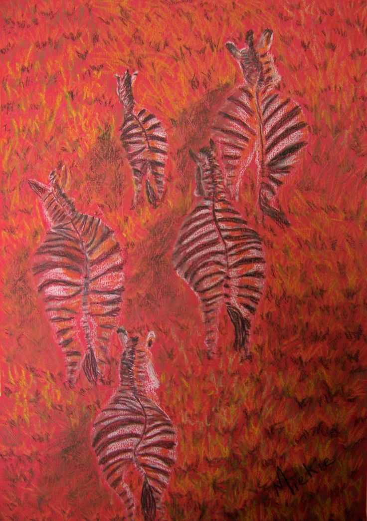 Sunset Zebras.  A3 sized soft pastel on paper.  I loved the aerial view on the zebras' backsides in full flight.  I thought this to be a unique perspective.  I then chose a red background against which to develop the painting in order to capture the warmth of the African sunset.