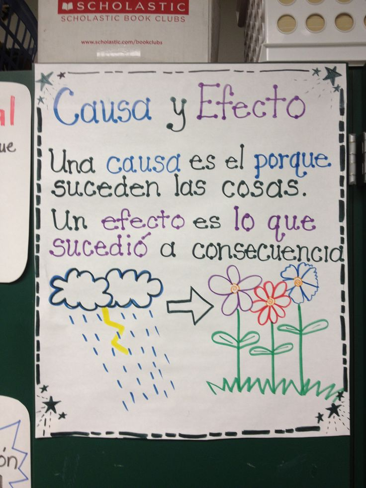 Spanish anchor charts-causa y efecto