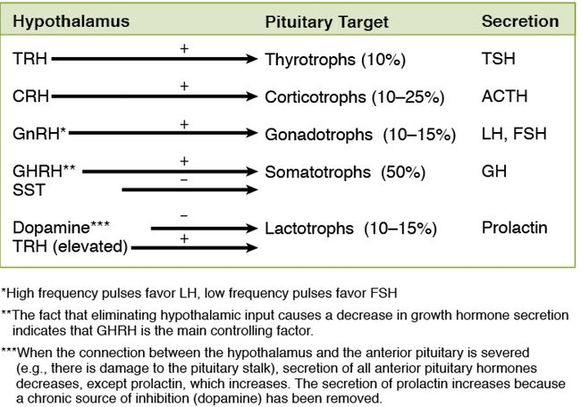 Control of the Anterior Pituitary