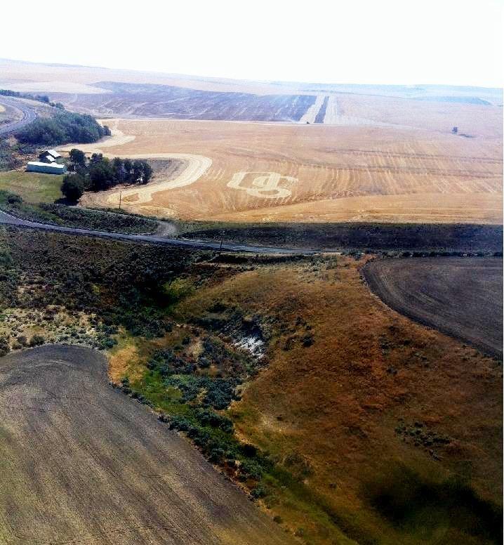 Sherman County, Oregon  wheat fields, dryland wheat, wind turbines, wind power, farming