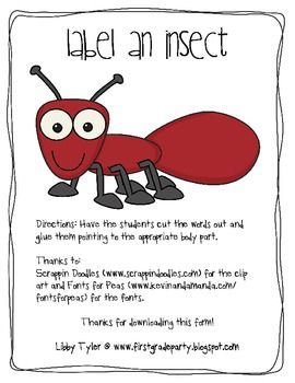 19 best Kindergarten Insects images on Pinterest