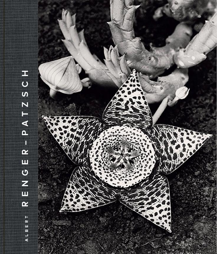 Auteur d'une œuvre monumentale, qui se déploie sur plus de quatre décennies, Albert Renger-Patzsch (1897-1966) fut le photographe le plus important au sein du mouvement artistique de la Nouvelle Objectivité, dans l'Allemagne des années 1920. Il contribue à élargir l'horizon de la perception et de la création de l'image, créant une œuvre prolifique à la fois d'une extrême simplicité et d'une grande originalité. Cette exposition, et le catalogue qui l'accompagne, permettent de montrer comment…