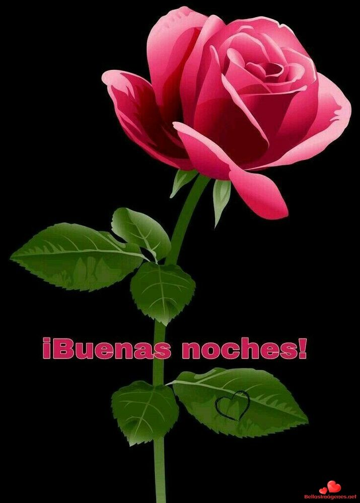 Bellas Imagenes De Buenas Noches 13 Bellas Rosas Gif Good Night
