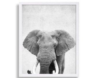 Animal Print Elephant Poster Large Art Grey Decor Modern Nursery Art  African Theme Safari Animal Portrait