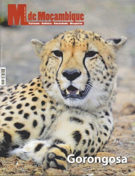 """The magazine """"M de Moçambique"""" dedicated to Tourism, Culture, Society and Sport (with articles in Portuguese and English) published an interesting article about Gorongosa with the title """"The New Lords of the Jungle"""", written by Jean-Paul Vermeulen.http://on.fb.me/T9ifhK"""