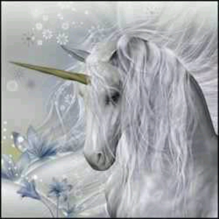 305 best Unicorns, Pegasus and other Mythical creatures ...