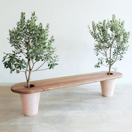 Garden bench with potted trees on either end- patio