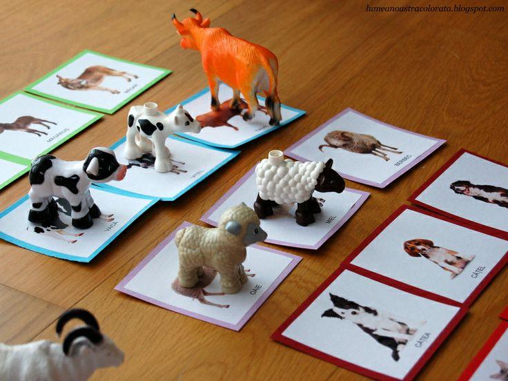 Cartonase Animale Domestice - Domestic animals Montessori cards
