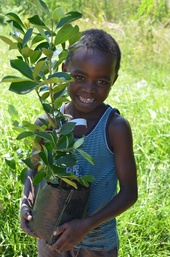 Gopalang, age 7, at Botshabelo orphanage, South Africa, holding a baby guava tree – one of hundreds of fruit trees planted to provide nutrition for children in the community.