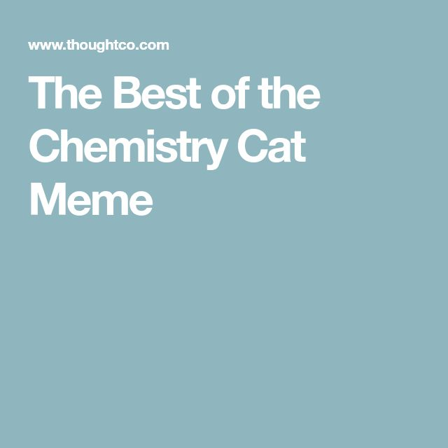 The Best of the Chemistry Cat Meme