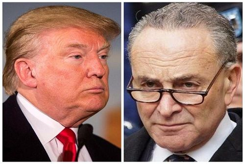 Moron= Chuck Schumer. (202) 224-6542, Call the donkey and remind him RIGHT won! DEMONcrats are vile domestic terrorists