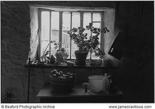 Farmhouse window with apple basket, Langham, Dolton, Devon, England, 1985 copyright estate of James Ravilious