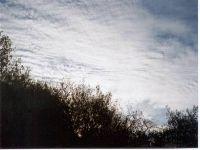 Cirrostratus clouds are thin, sheetlike high clouds that often cover the entire sky. They are so thin that the sun and moon can be seen through them. Cirrostratus clouds usually come 12-24 hours before a rain or snow storm.