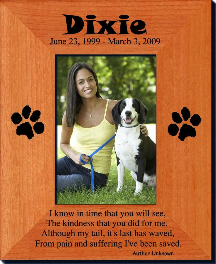 pet memorials always free laser engraving create your own picture frame starting