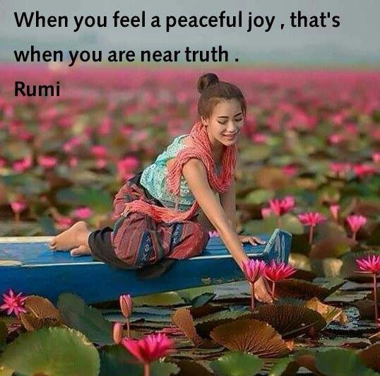 Rumi...you are near truth.                                                                                                                                                                                 More