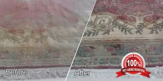 Rug Deep Cleaning Plantation: Treatment for Your Antique Persian Rugs