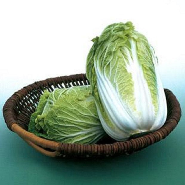 Chinese Cabbage Kyoto No. 3, Used in sukiyaki, yosenabe, ohitashi, stir-fries, salad, and pickling (including kim chee).""