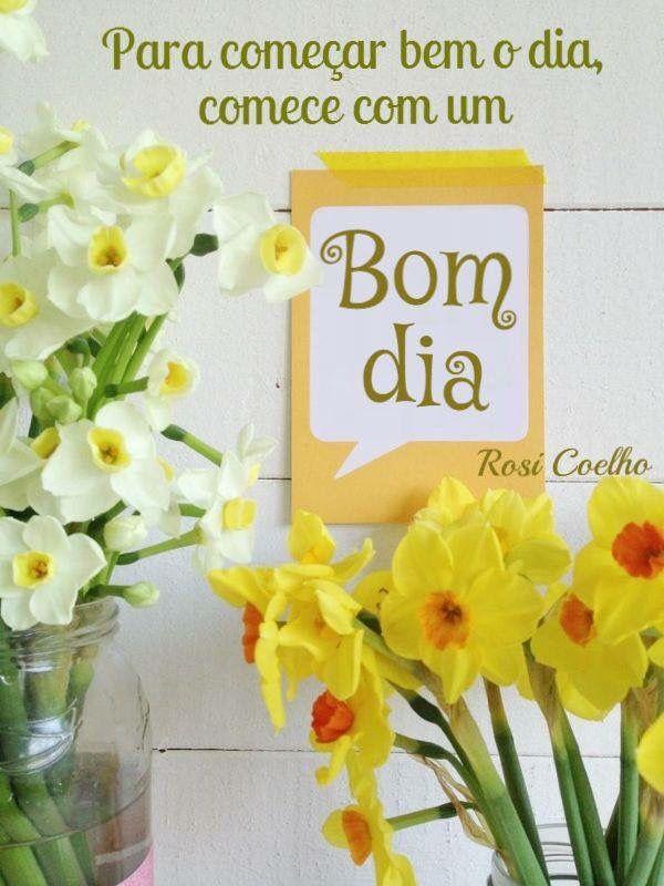 Facebook Felicitações Spring Spring Photography E Daffodils