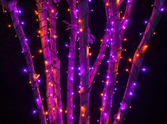 25+ Best Halloween Lighting Ideas On Pinterest | Spooky Halloween  Decorations, Halloween Dance And DIY Halloween