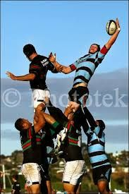 Image result for Marist Rugby images