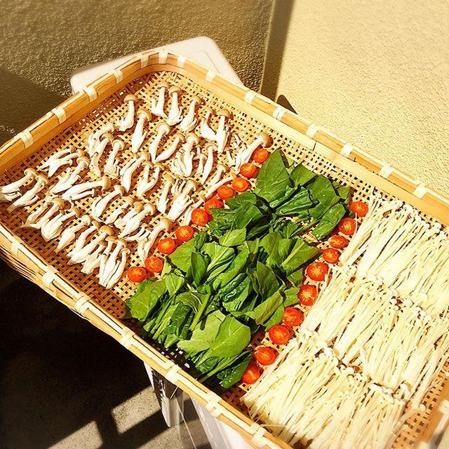 * めっちゃ晴れーーー きょぅもせっせと干し野菜(о´∀`о) * * #きのこ バージョン、これはまた#カレー になる#肉 は#豚#しめじ#えのき#ほうれん草#トマト#野菜#ベジタリアン#vegetable#curry#晴れーーー#sunny#sunnyday#干し野菜
