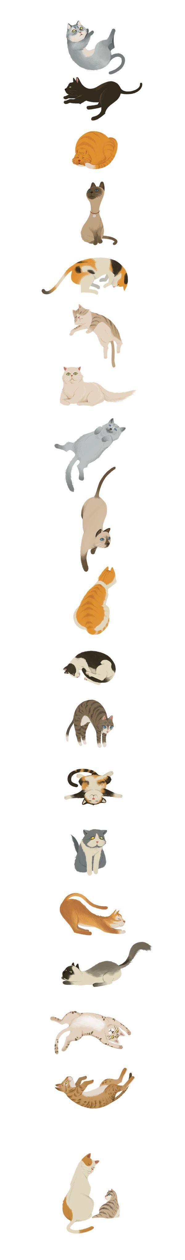 Cats by Wonho Jung, via Behance