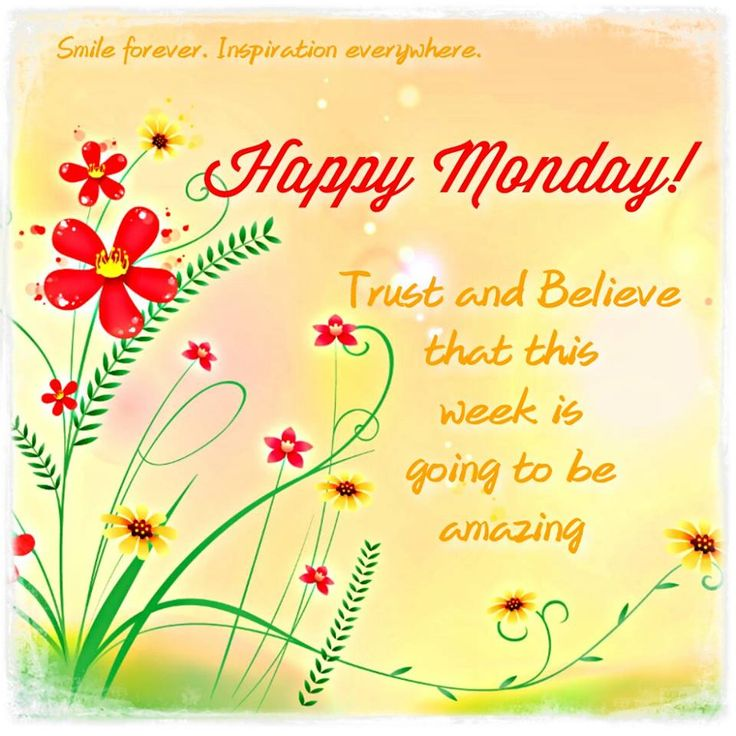 Happy Monday Morning Greetings | happy monday images of 2015 here i have given to happy monday images ...
