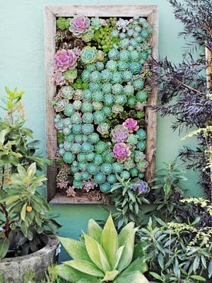 "Similar to nursery flats, these rectangular, plastic trays are divided into planting cells — all slanted at a 30-degree angle, with bottom holes that promote drainage and aeration. Each tray comes with a bracket for mounting, though you'll need to add a wood frame to achieve the ""wall art"" look above.    Read more: Vertical Gardening Ideas - How To Make a Vertical Garden - Country Living"