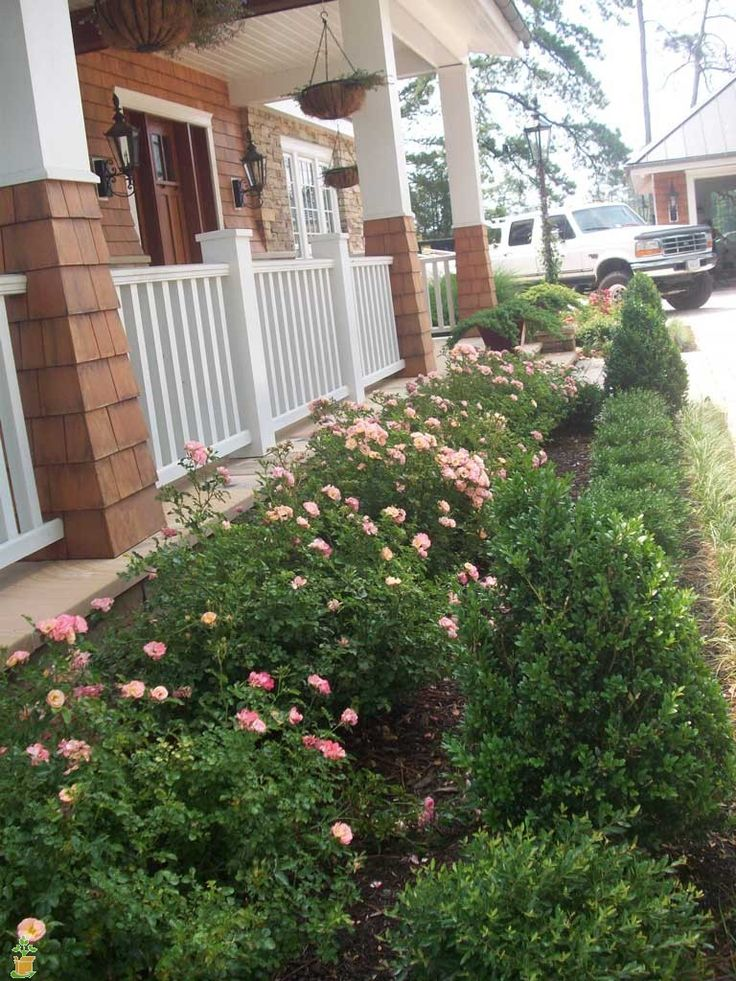 186 best images about drift groundcover roses on for Garden design with roses