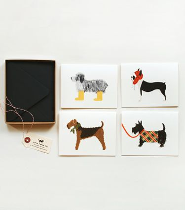 Scottish Terrier, Boston Terrier, Shaggy dog and Airedale