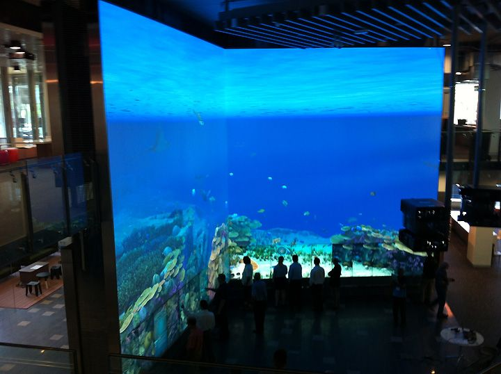 Exhibition Stand Interactive : Wow virtual reef interactive multitouch installation by