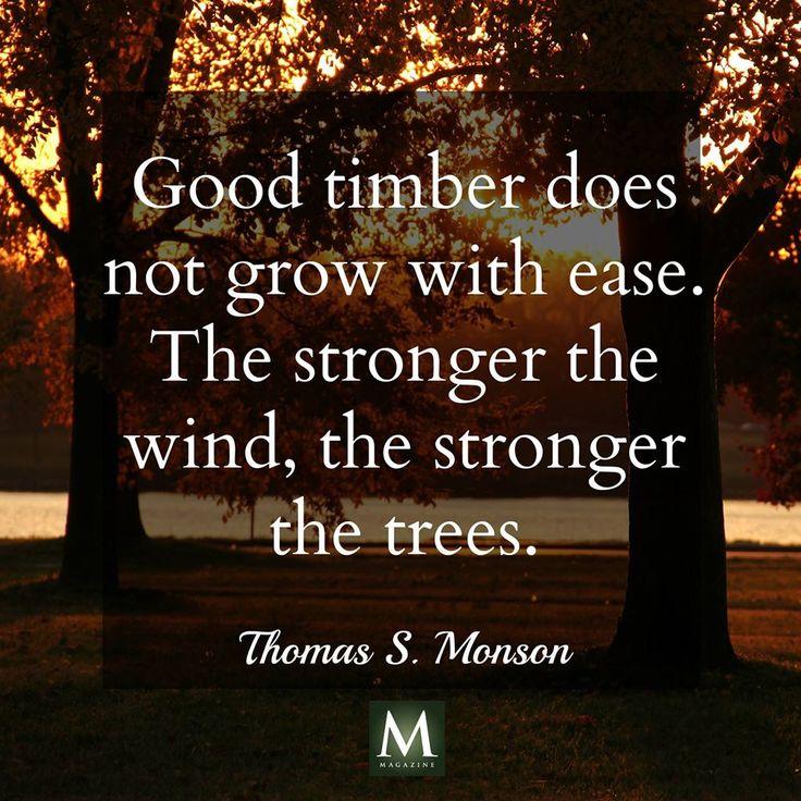 Хороший лес растет не без труда Чем крепче ветер, тем прочней кора  Дуглас Маллох.  Его цитировал на Генеральной конференции Президент Томас С. Монсон