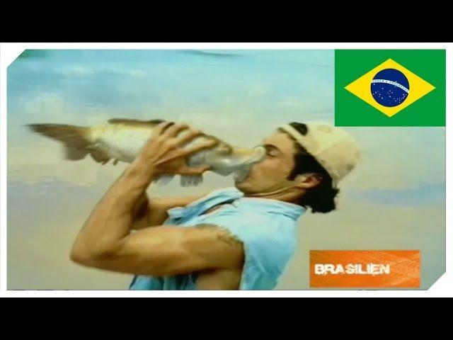 Hierfür streiten sich sogar Fische darum geangelt zu werden, Cedric The Entertainer auf einer einsamen Insel und Missverständnisse am Pool.     https://www.youtube.com/watch?v=LcartWnei74   #Bierwerbung #Brahma #Brasilien #BudLight #CMP #Commercial #Hunters #lustigeWerbung #Südafrika #USA #Werbeclip #Werbespot #Werbung #WitzigsteWerbespotsderWelt #WWWDiewitzigstenWerbespotsderWelt
