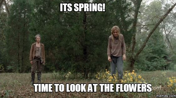 funny spring memes | its Spring! time to look at the ...