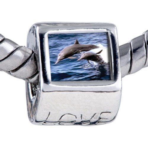 Pugster Bead Dolphin Family Photo Beads Fits Pandora Bracelet Pugster. $12.49. It's the photo on the love charm. Hole size is approximately 4.8 to 5mm. Bracelet sold separately. Unthreaded European story bracelet design. Fit Pandora, Biagi, and Chamilia Charm Bead Bracelets