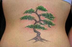 Japanese Tattoos on Pinterest | Bonsai Tree Tattoos Bonsai Tattoo and ...