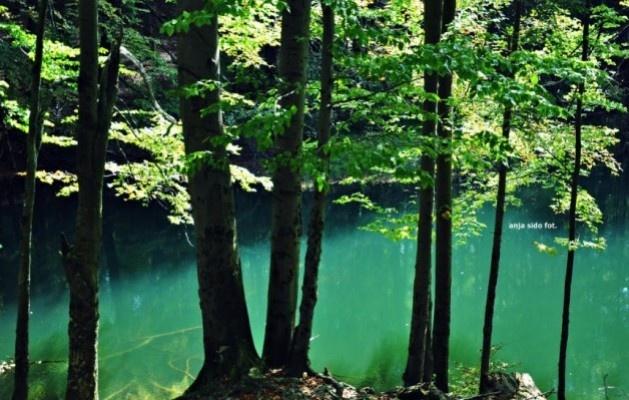 Bieszczady - Jeziorka Duszatyńskie
