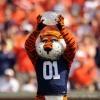 Favorite Auburn Football