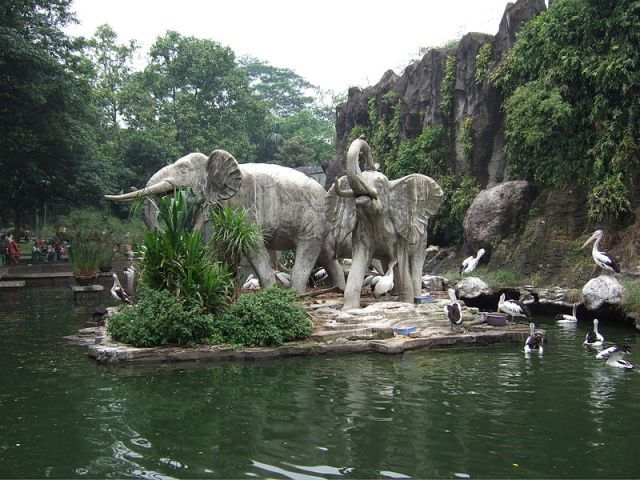 The Ragunan Zoo and Its Animals - #Indonesia #CushTravel.com Blog
