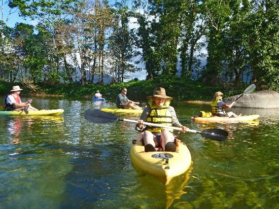 Babinda Kayak Tour from $55 Call Us 1300 731 620 or Visit http://www.fnqapartments.com/tour-babinda-kayak-tour/area-cairns/ #CairnsTourPackages