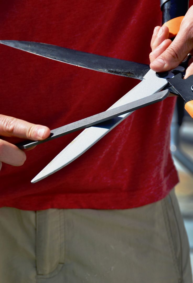 How To Sharpen Clean Garden Tools Gardens Hedges And The O 39 Jays