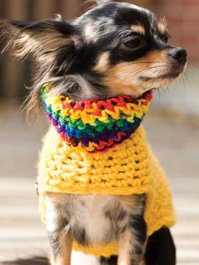 Your pooch will look stylish in these warm sweaters! Finished Size: To fit a small (2-5 lbs) dog. Skill Level: Easy