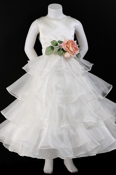 Angelic Organza Dress